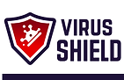 VS-1000 Flyer_Page1 Logo.png