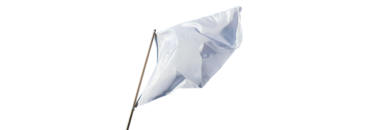 flag_pic.png