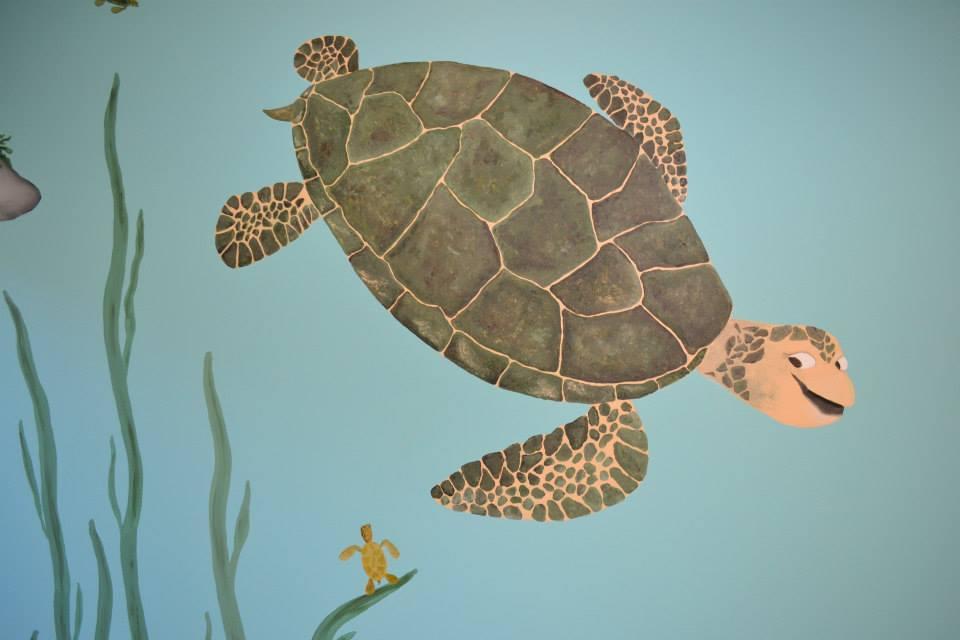 rcn turtle
