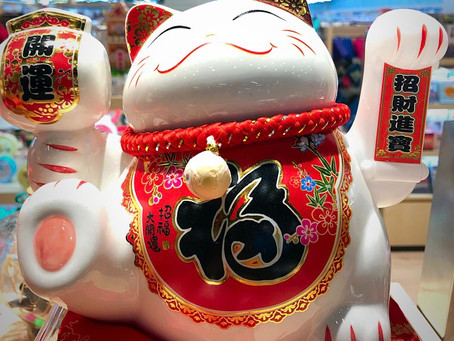 Fortune Cat - What does it symbolise?