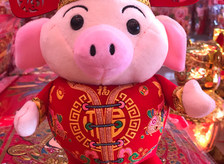 Year of the Pig - 猪年