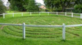 Wing Maze.jpg