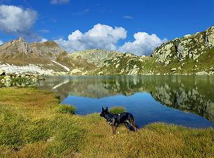 high-mountains-2535761_960_720.jpg