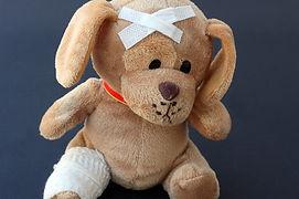 teddy-242851_960_720.jpg