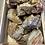 Thumbnail: 木化石