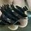 Thumbnail: スマトラタイガー 6-7㎝ 画像はサンプル 腹巻発色良好個体