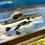 Thumbnail: レッドテールキャット 約65センチ
