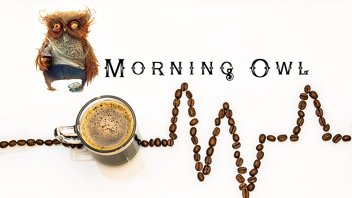 morning owl.png