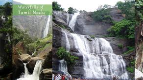 28 picturesque waterfalls in Tamil Nadu