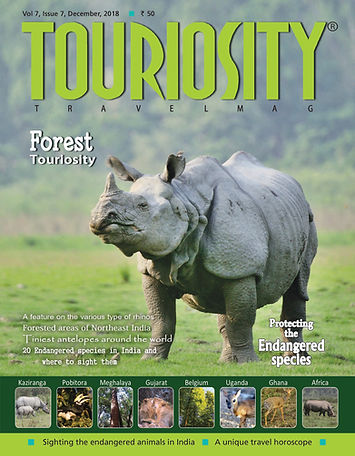 Forest issues have been the most frequent at Touriosity Travelmag and our readers cannot have just enough. Forests of the world are full of resources and stories, the wildlife is beckoning too. So this time we thought of capturing them with our cameras and pen once again. The focus this time is on the endangered animals of the world with a special emphasis on the rhinos. There are also articles and anecdotes on the world's smallest antelopes, most of them rather unknown to travellers and animal lovers in this part of the world.