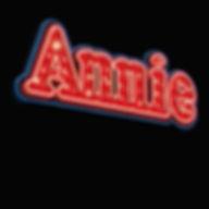 2019  - Annie show box.jpg