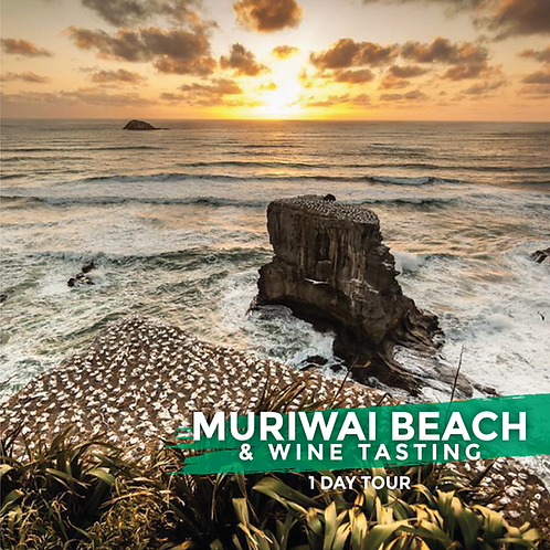 9th May | Muriwai Beach & Wine Tasting (Day Tour)