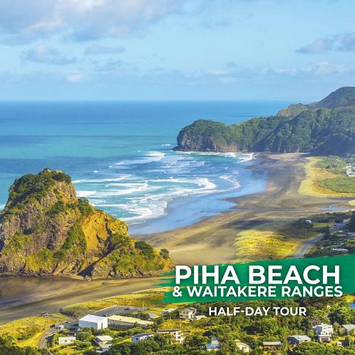 22nd January | Piha Beach & Waitakere Ranges (Half-day Tour)