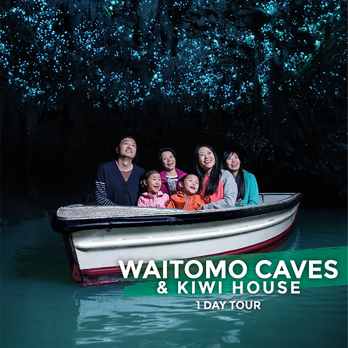 18th April | Waitomo Caves & Kiwi House (Day Tour)