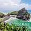Thumbnail: SMALL GROUP TOUR | Piha Beach & Waitakere Ranges (Day Tour)