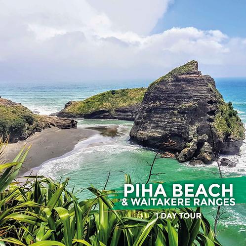 SMALL GROUP TOUR | Piha Beach & Waitakere Ranges (Day Tour)