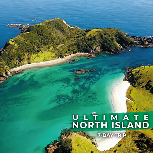 4th to 10th January | Ultimate North Island Trip (7-Day Tour)