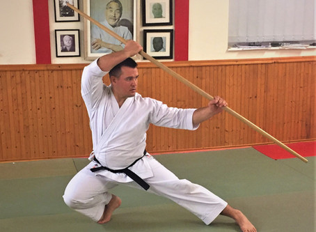 Why Kata training is so valuable?