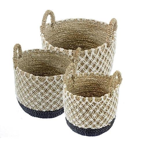 Amelia Basket