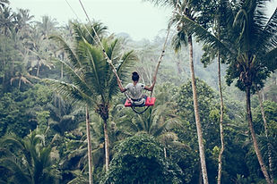 person-riding-on-zip-line-1090551_edited
