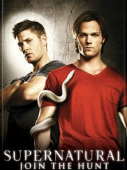 Supernatural: Sam, Dean and Snake Photo