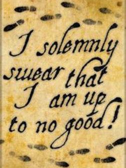 Harry Potter: I Solemnly Swear