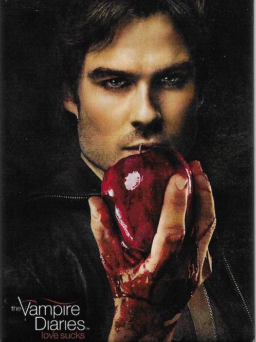 The Vampire Diaries: Damon holding Apple. RETIRED