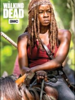 TWD: Michonne Riding a Horse