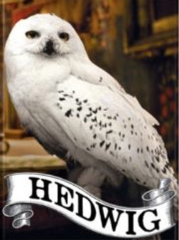 Harry Potter: Hedwig the Owl