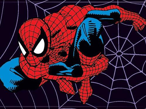 Marvel Comics: Spider-Man On A Spider Web