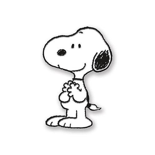 Snoopy-Retried