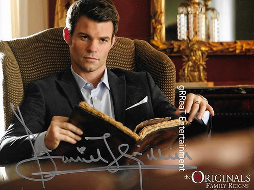 Daniel Gillies autographed 10 in x  8 in photo