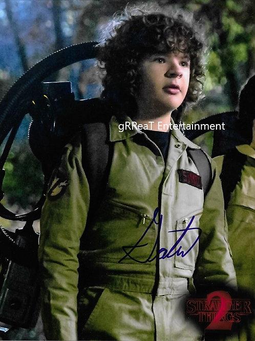 Gaten Matarazzo autographed 8 in x 10 in photo