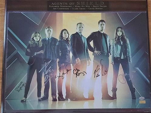 Agents of S.H.I.E.L.D. autographed plaque