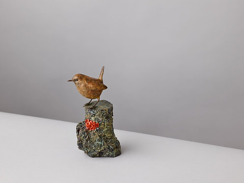 WREN WITH CUP FUNGI