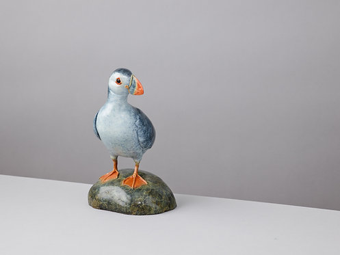 PUFFIN ON A PEBBLE