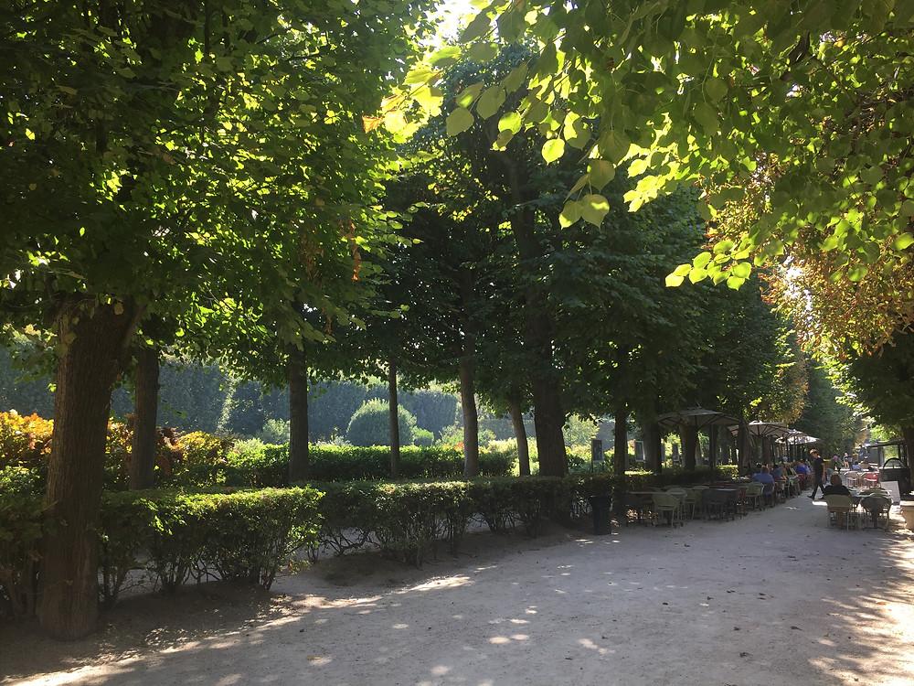 The Rodin Museum Café