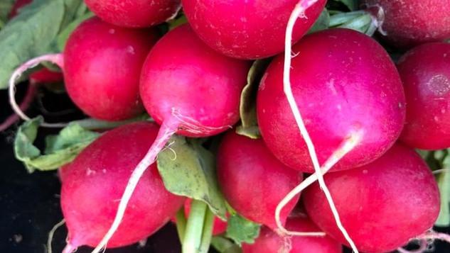 Le marché Biocancour - Des radis
