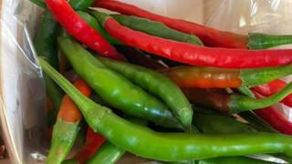 Le marché Biocancour - Des poivres