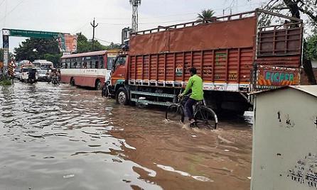 मेनका गांधी तक पहुंचा करंट से बछड़े की मौत का मामला, शहर में खुले पड़े हैं बिजली के तार