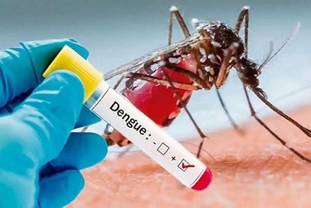 जिले में डेंगू का प्रकोप लगातार बढ़ता जा रहा है तेजी से पसार रहा पांव, छह नए रोगी मिले