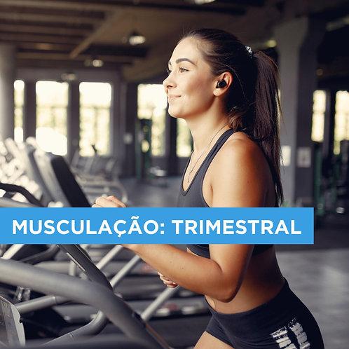 PLANO TRIMESTRAL DE MUSCULAÇÃO