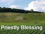 PriestlyBlessing.jpg