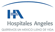 H GRUPO ANGELES.png
