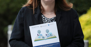 Dublin Safer Families Service A Therapeutic Response to Domestic Violence
