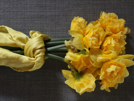 Day 2: Daffodil Dye