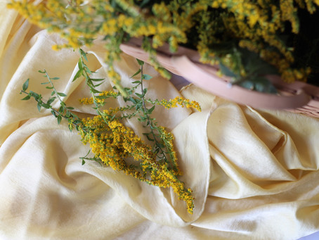 Goldenrod Dye