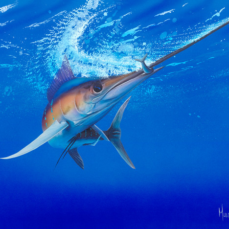 Marlin Time