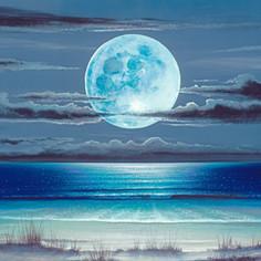 Moon Dunes