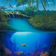 Paradise by Air, Land & Sea